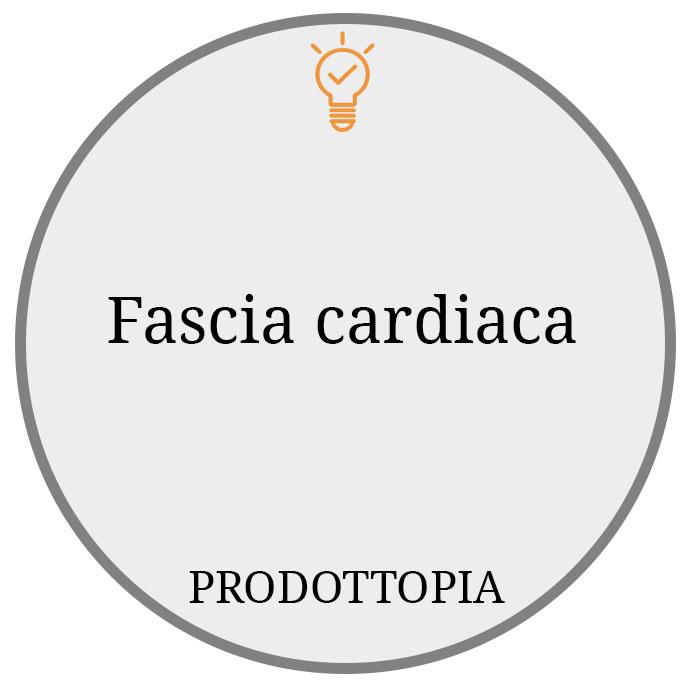 Fascia cardiaca