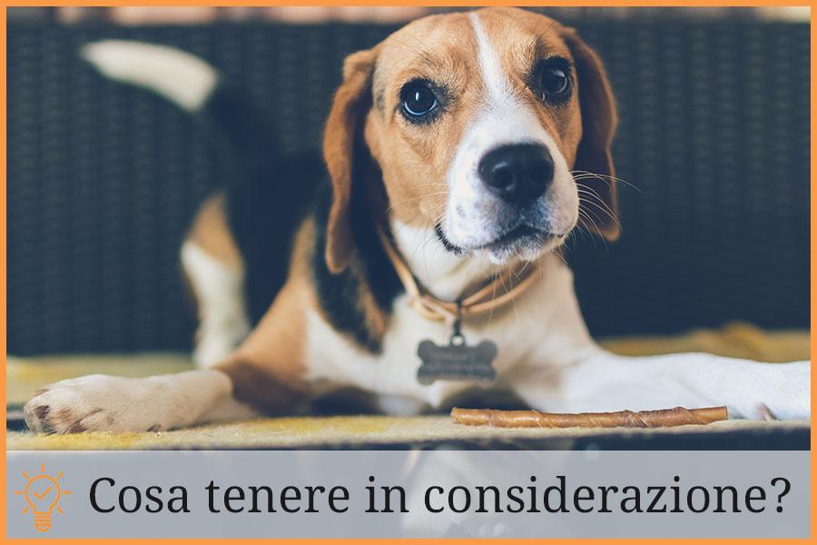 guida-all-acquisto-antiparassitari per cani
