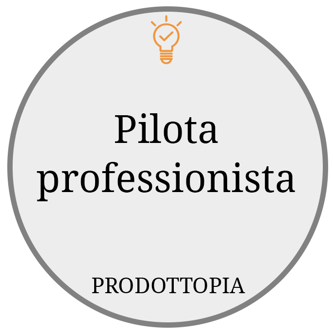 Pilota professionista